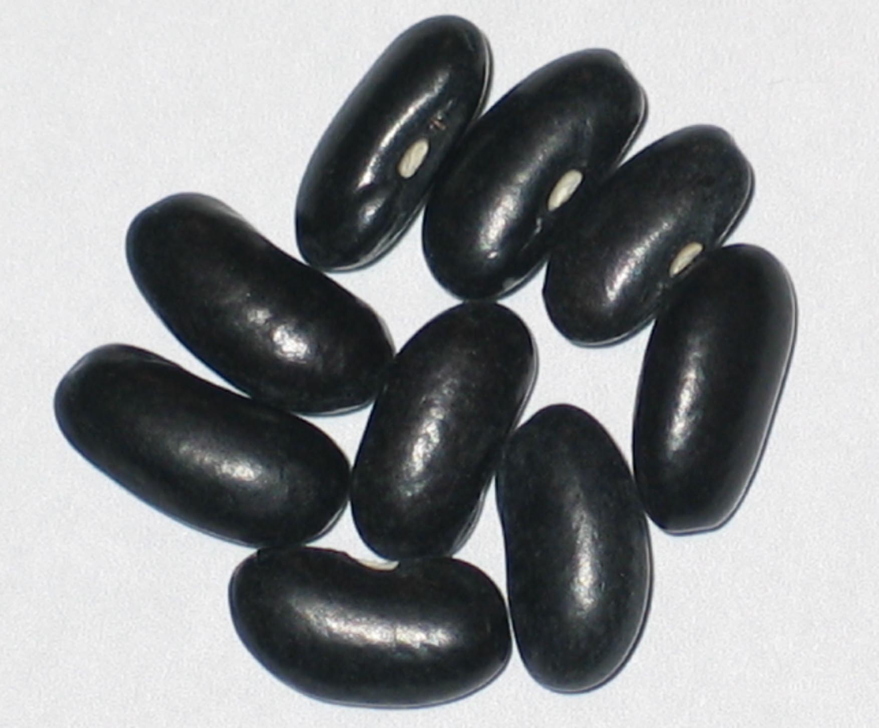 image of Black Valentine beans