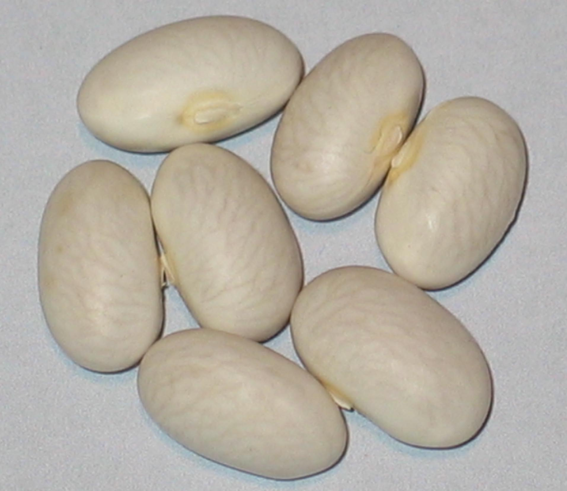image of Deseronto Potato Bean beans