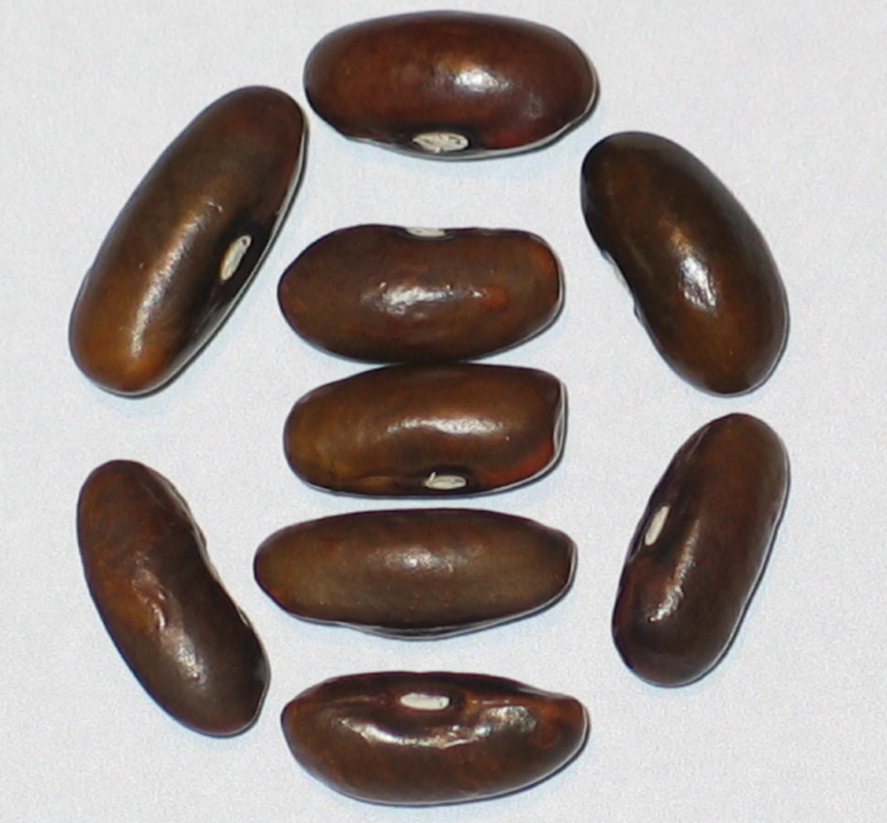 image of Fowler beans
