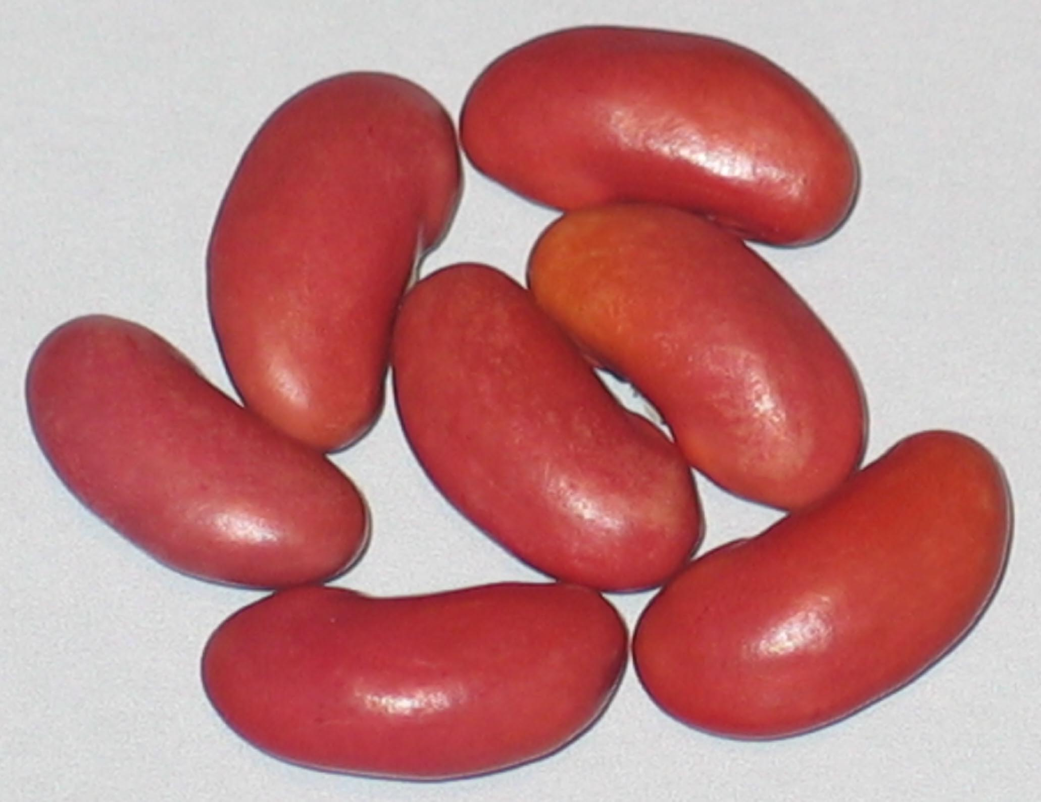 image of Feijao beans