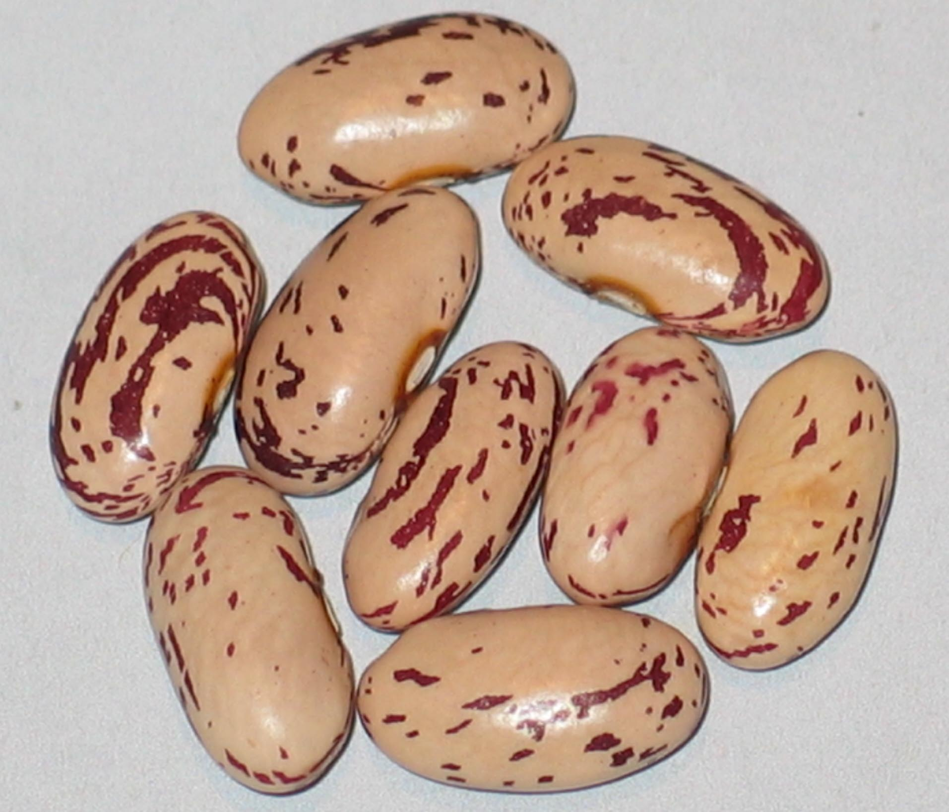 image of Goose Liver beans