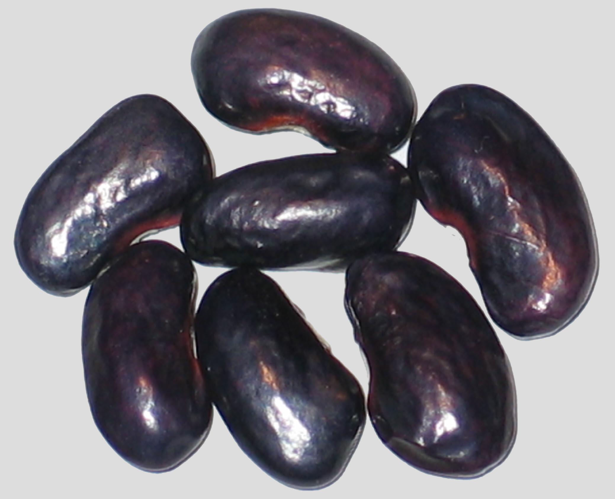 image of Highlight beans