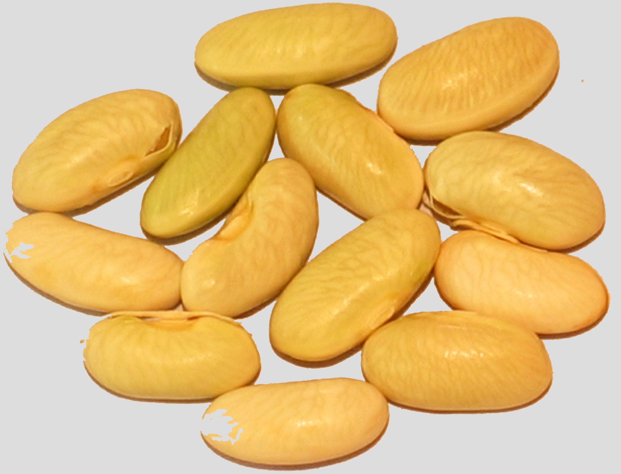 image of Imbali beans