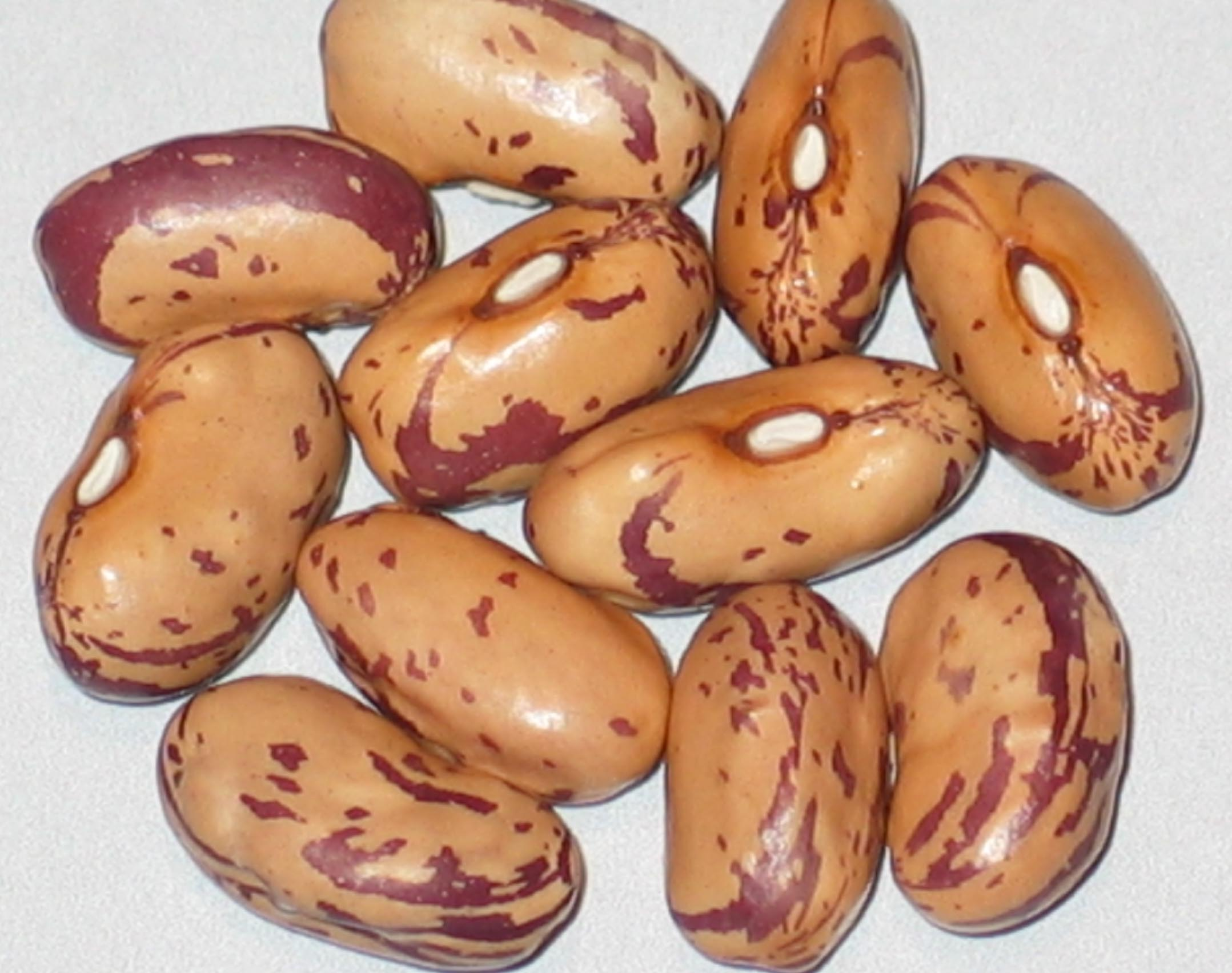 image of Jas beans