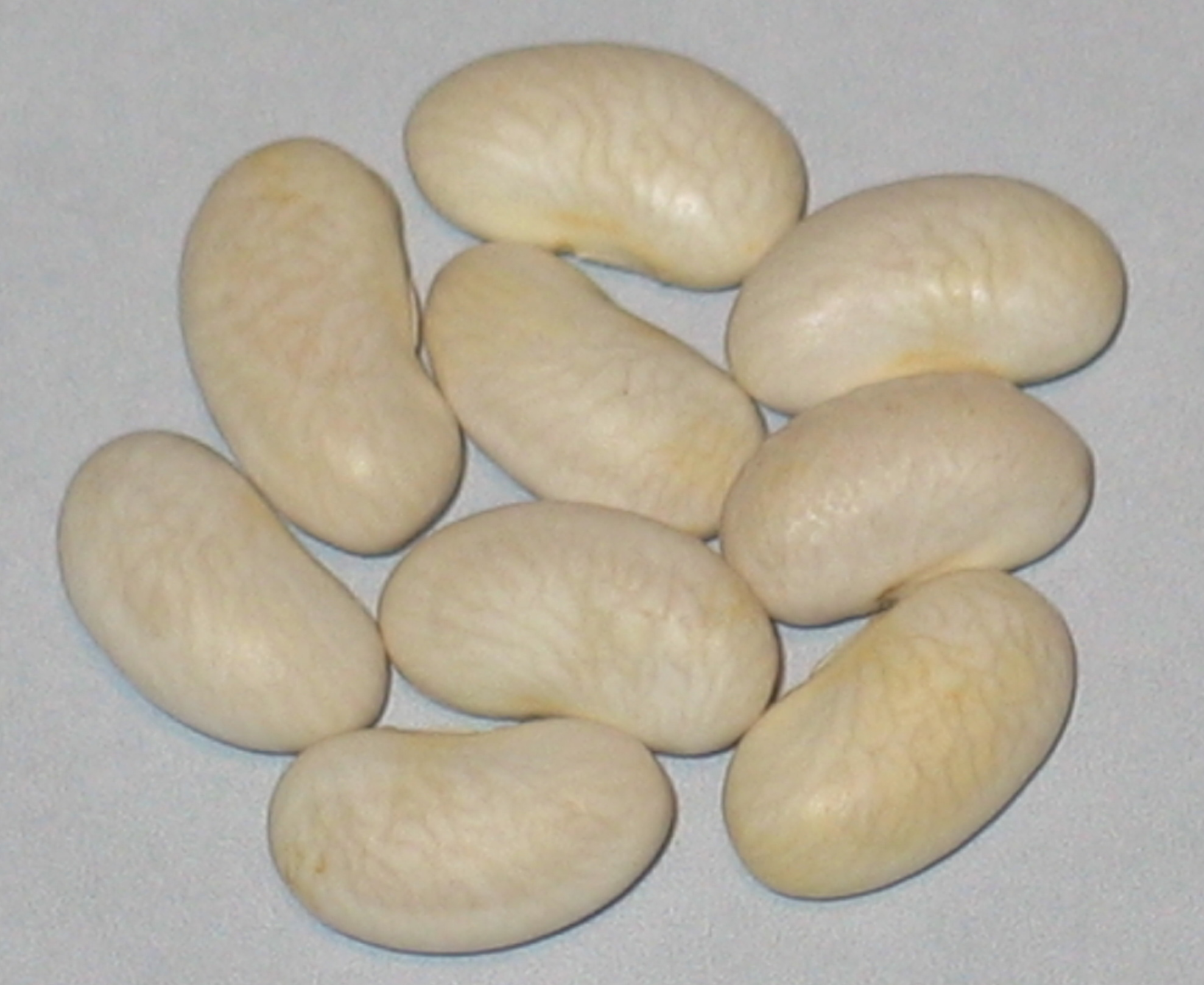 image of Nickell beans