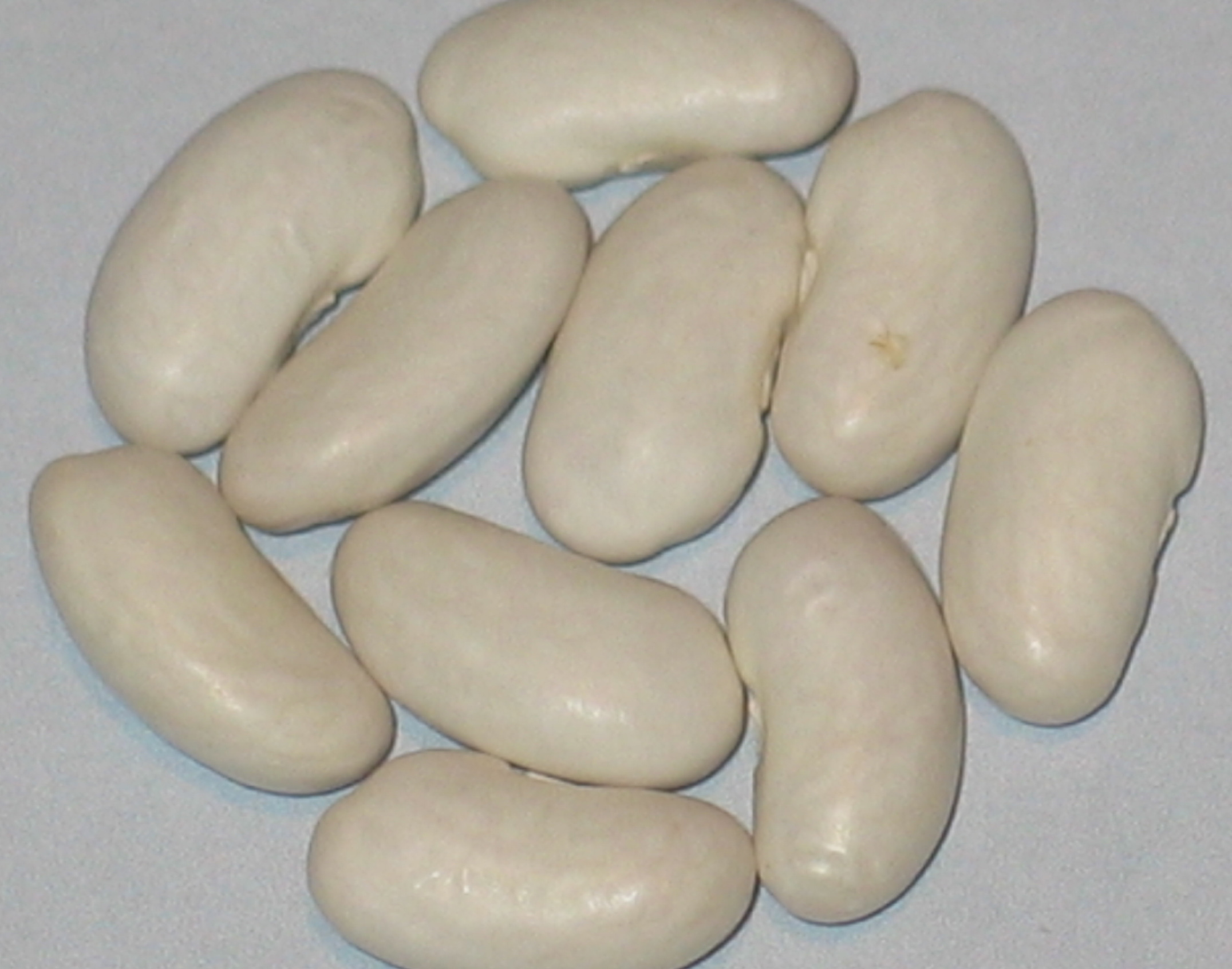 image of Piet Special beans