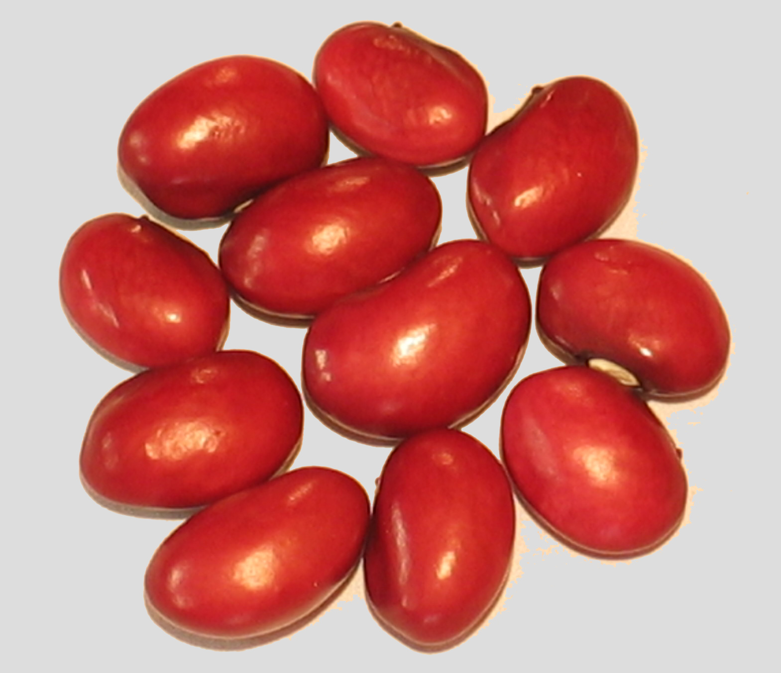 image of Pink Poded Burgundy Bolitas beans