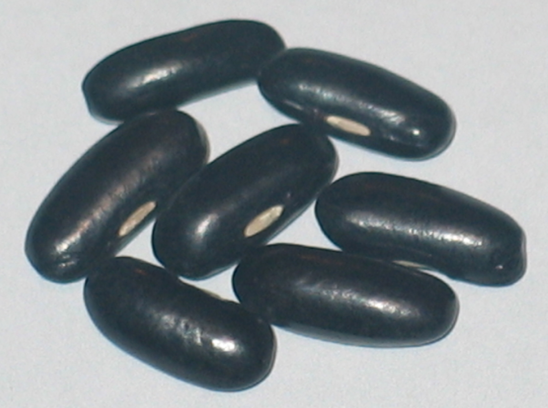 image of Roc D' Or beans