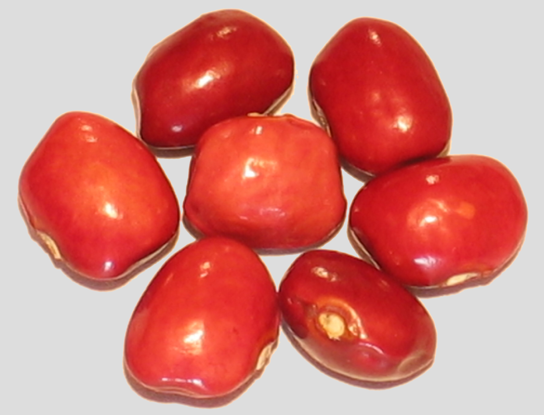 image of Rote Kipflerbohne beans