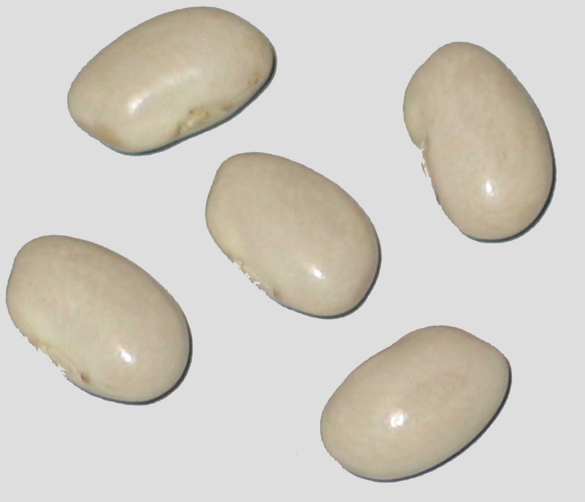image of Starlite beans
