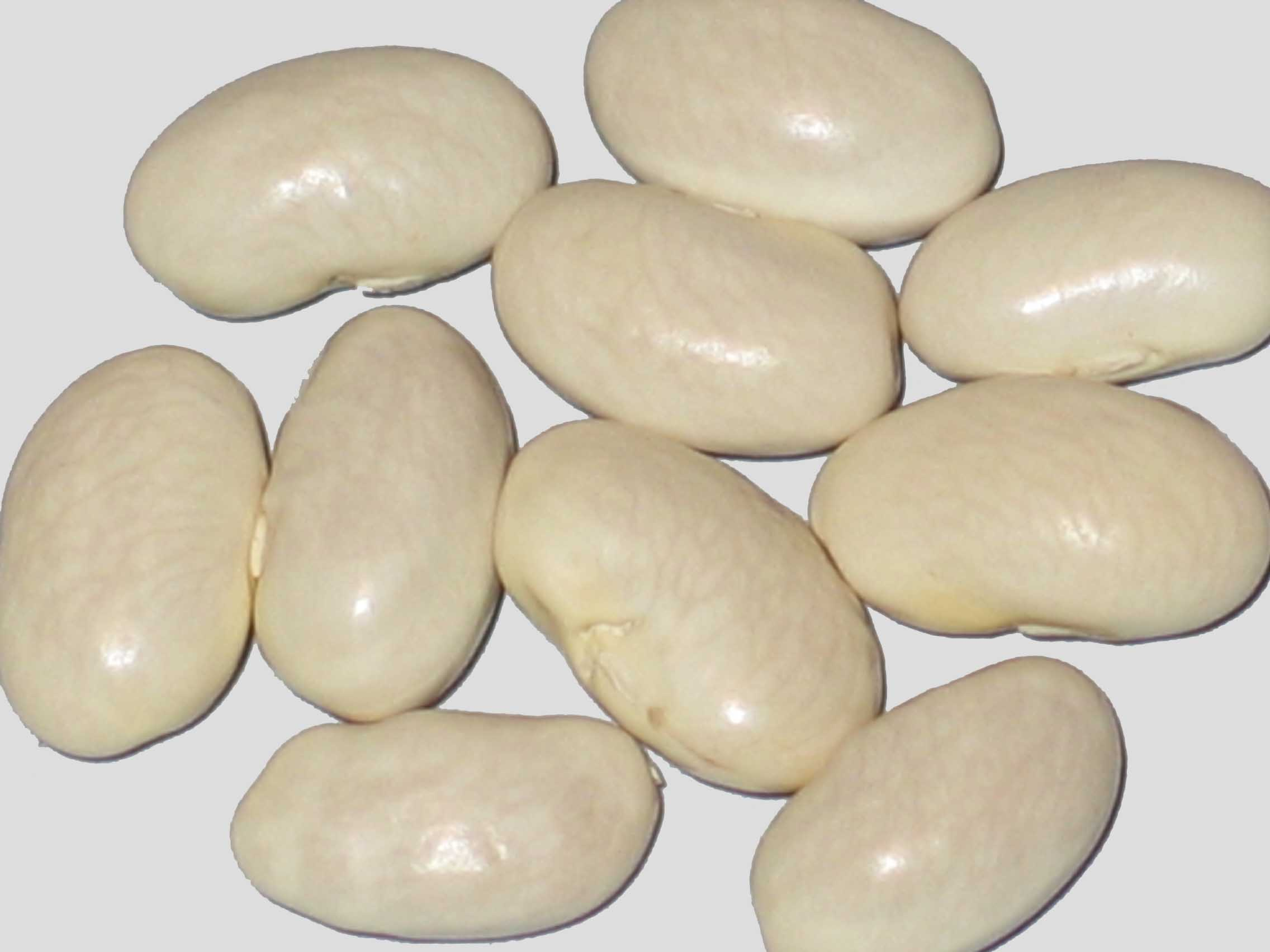 image of Veense beans