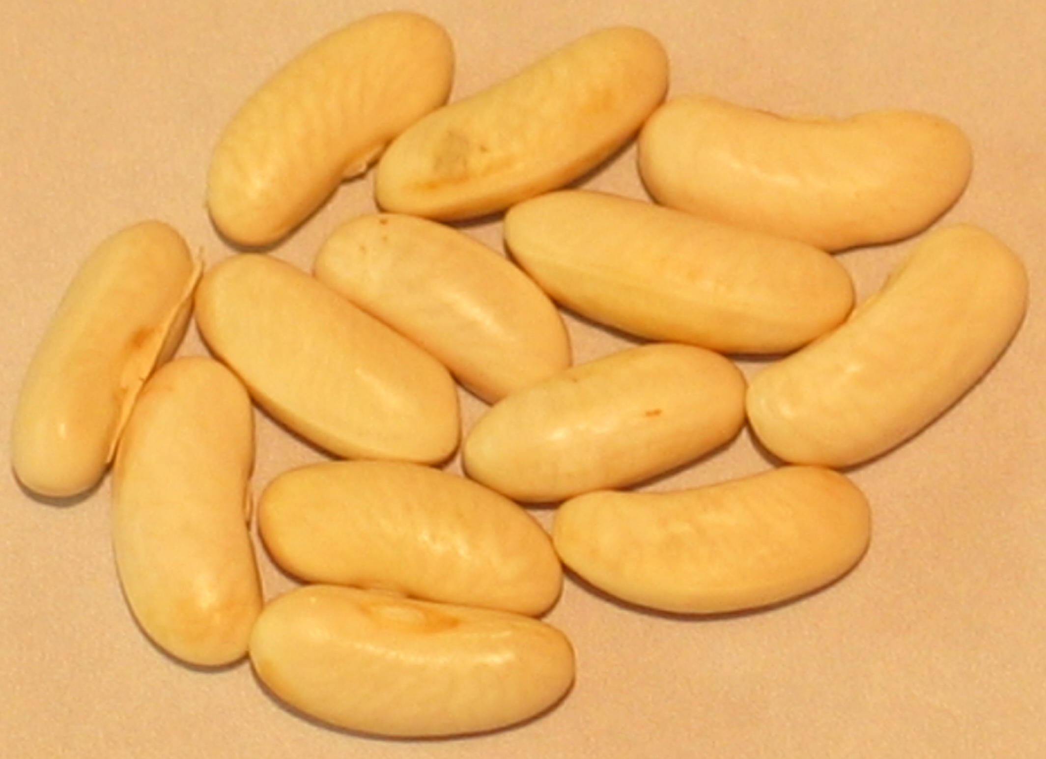 image of Volta beans