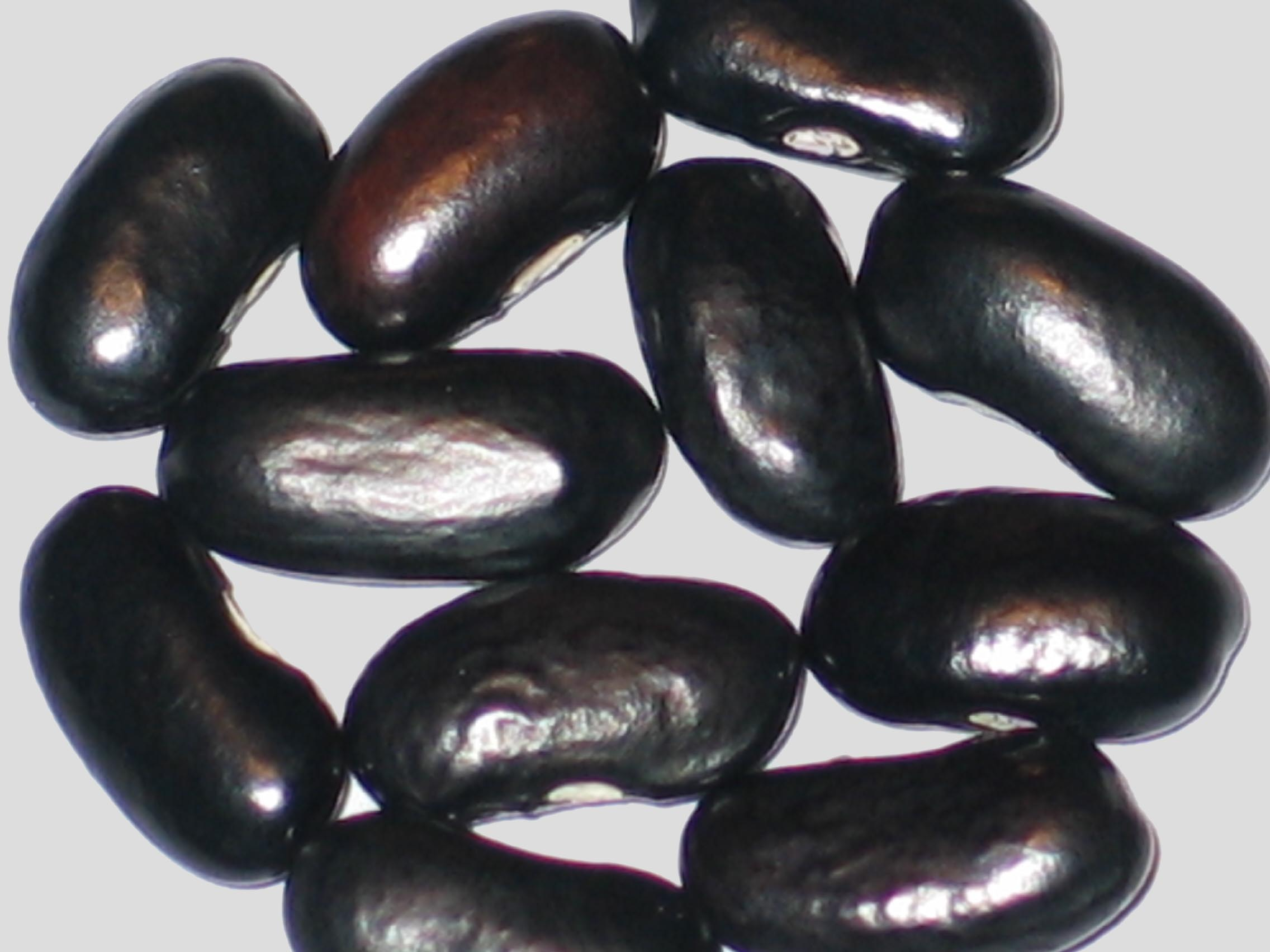 image of Yellow Point beans