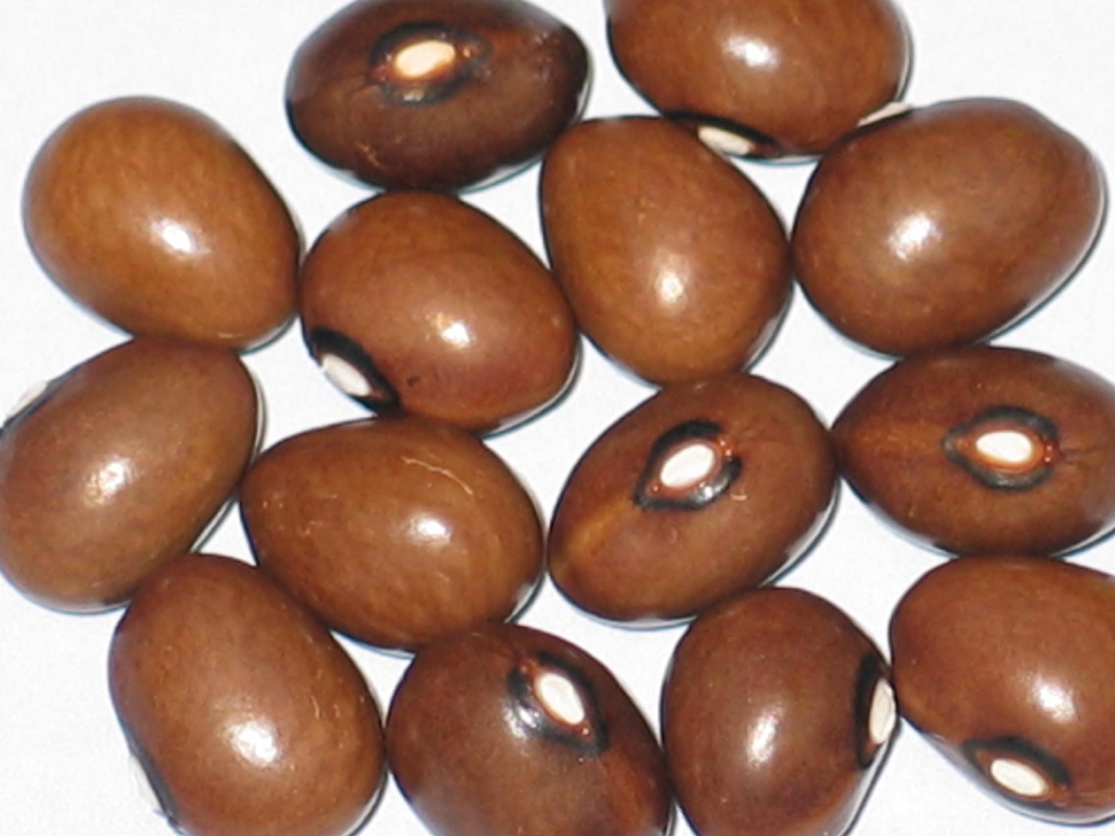image of Graines de Cafe beans