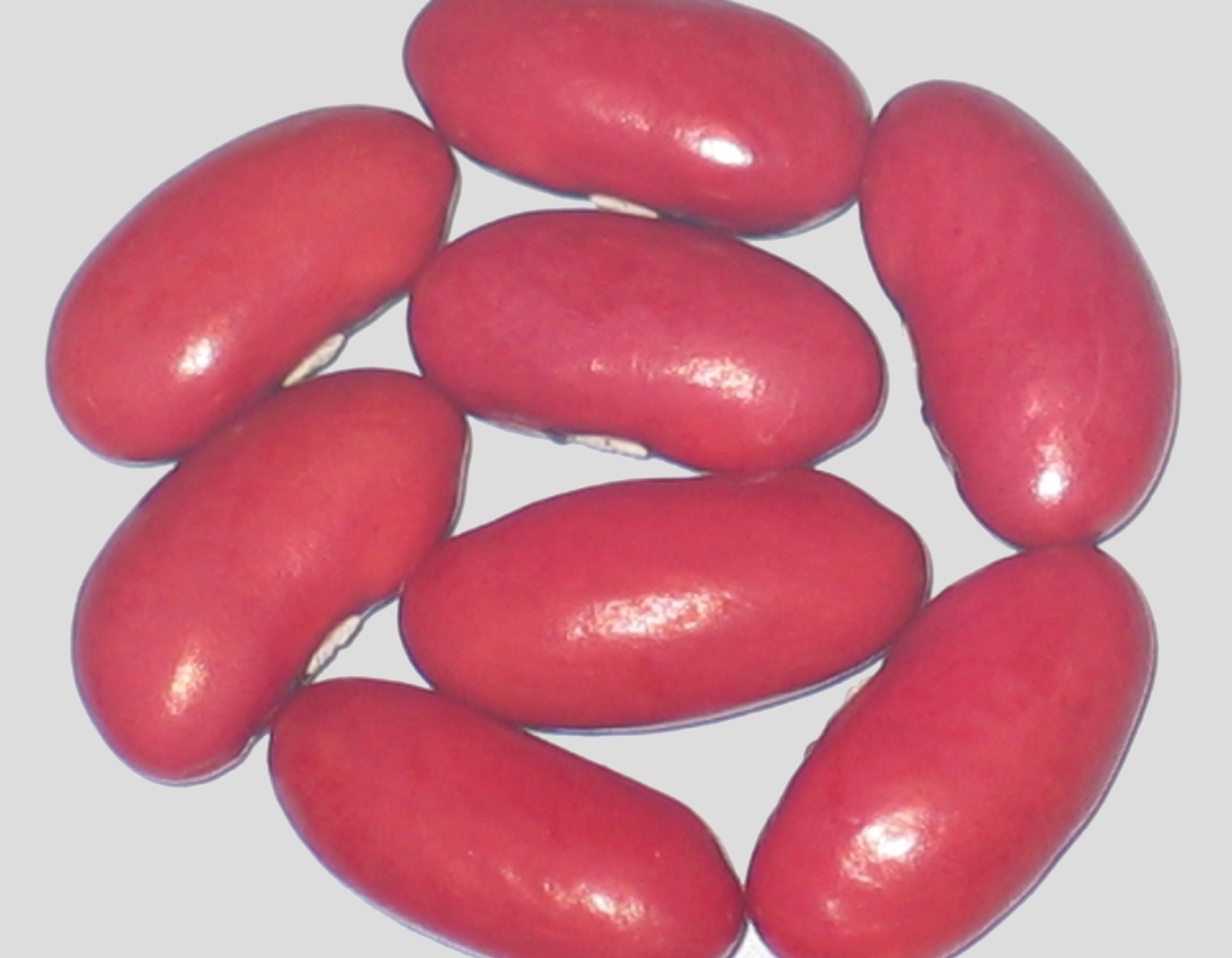 image of Indian beans