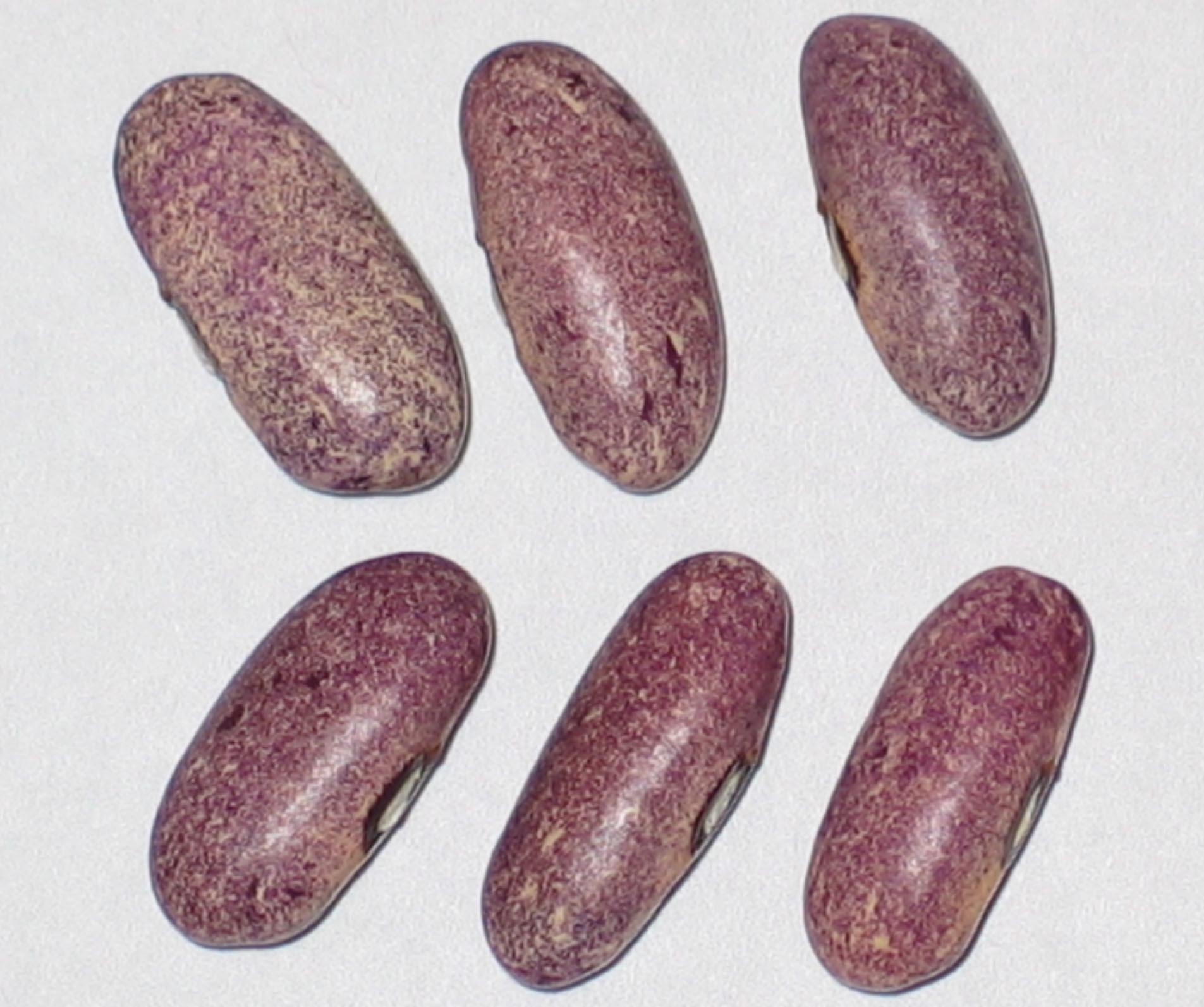 image of Mrociumere beans