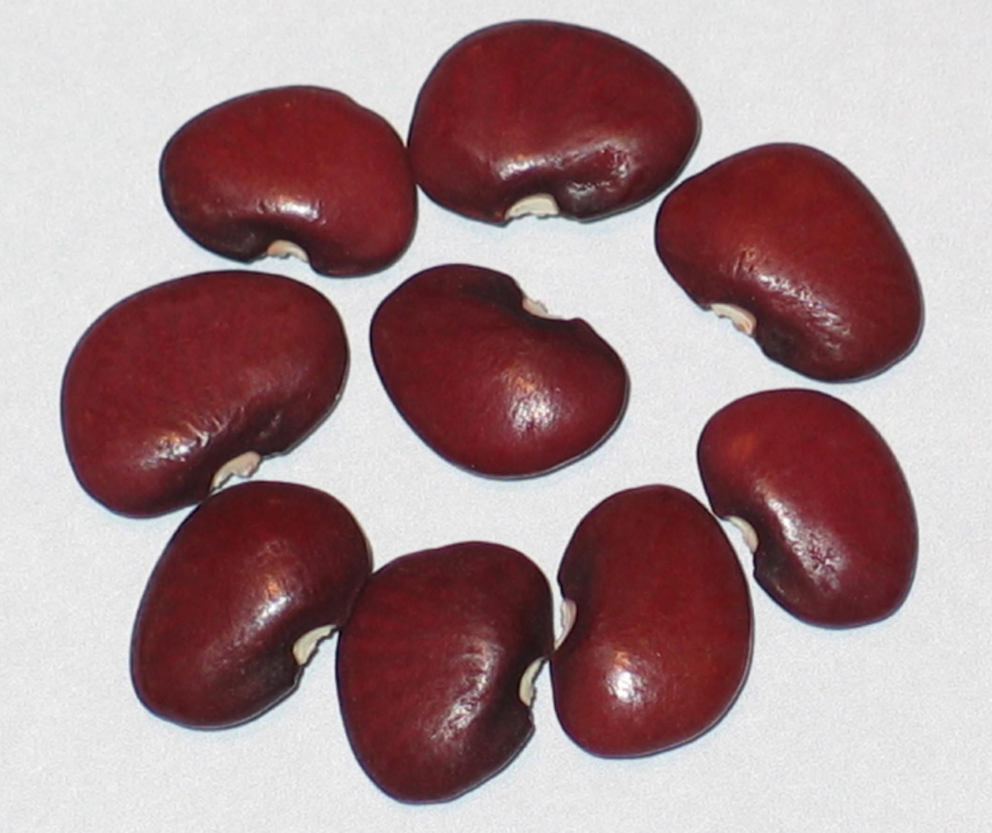 image of Red Lima beans