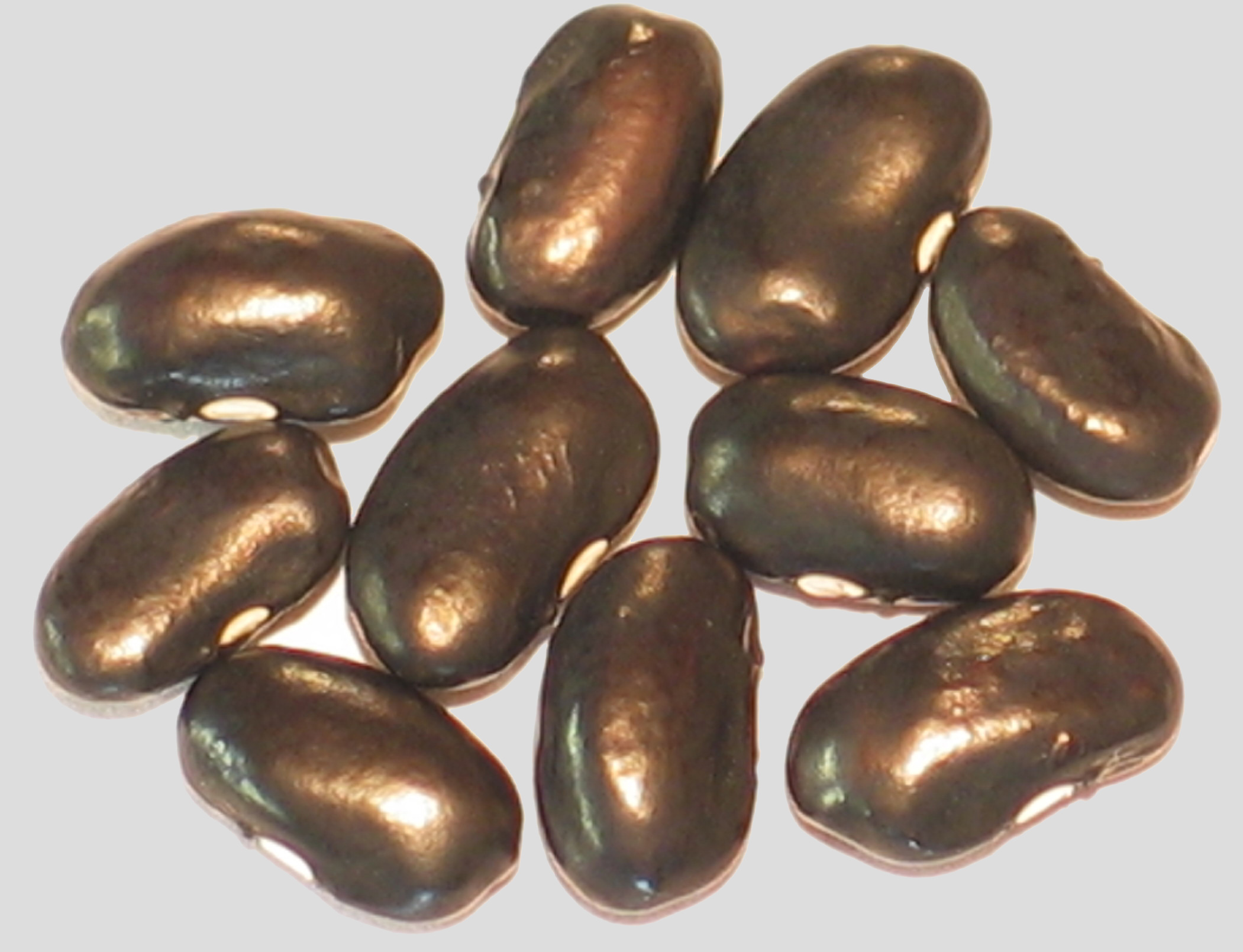image of Black Super Nova beans