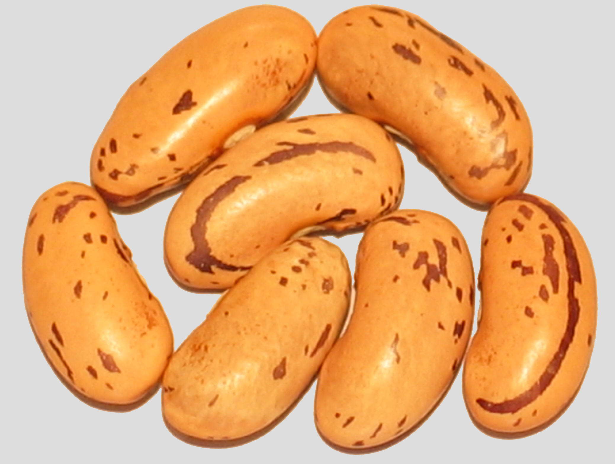image of Feijao Catarino beans