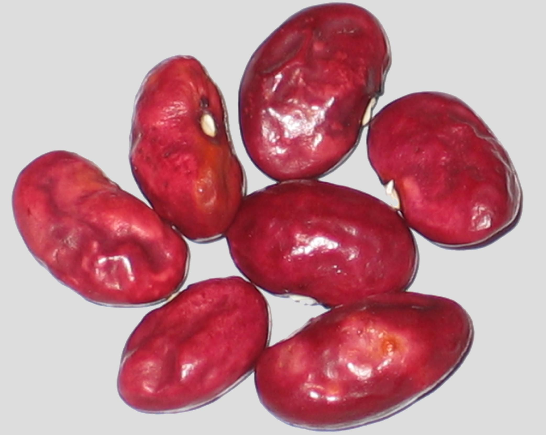 image of Flat Hollow beans