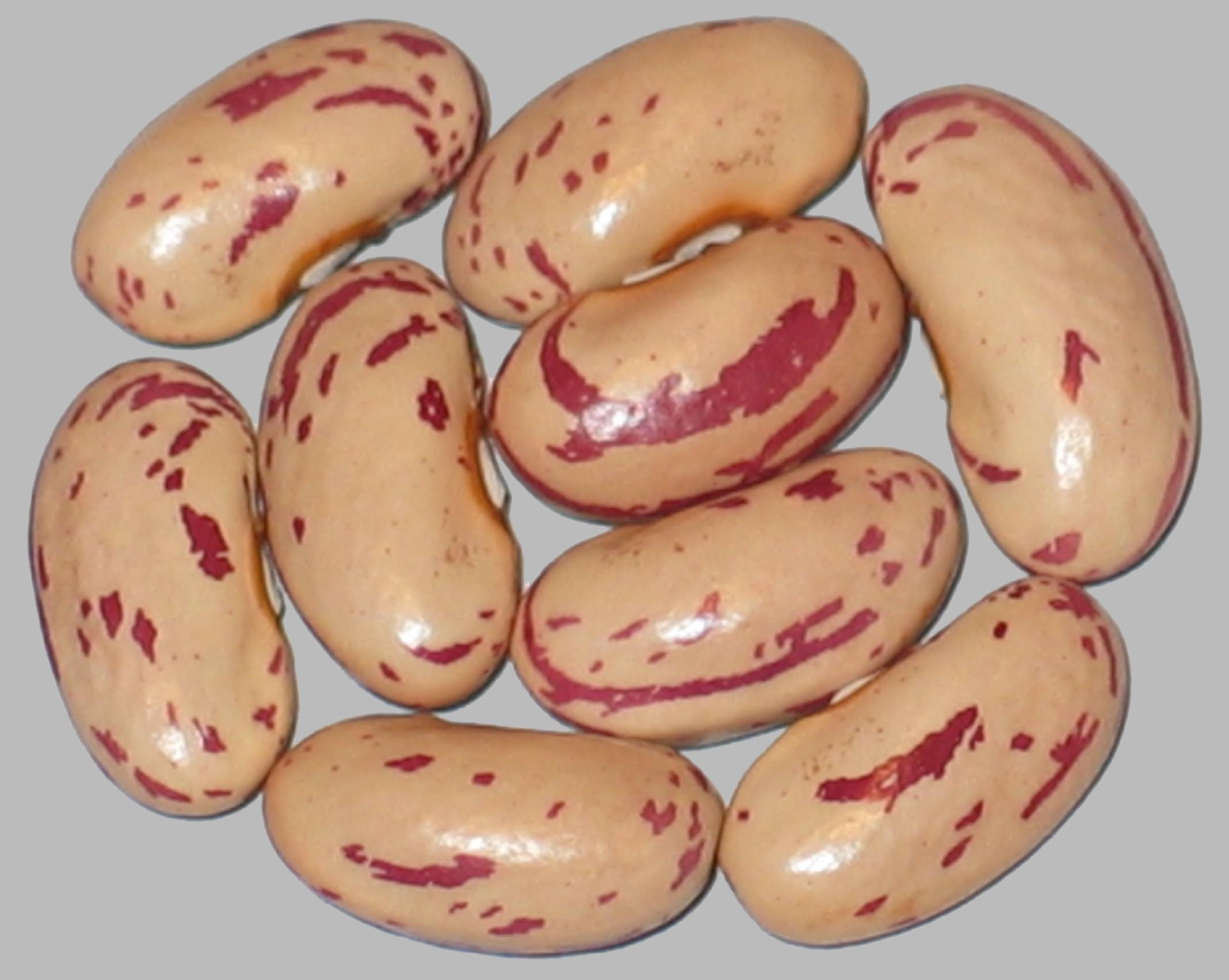 image of Irene's Russian beans