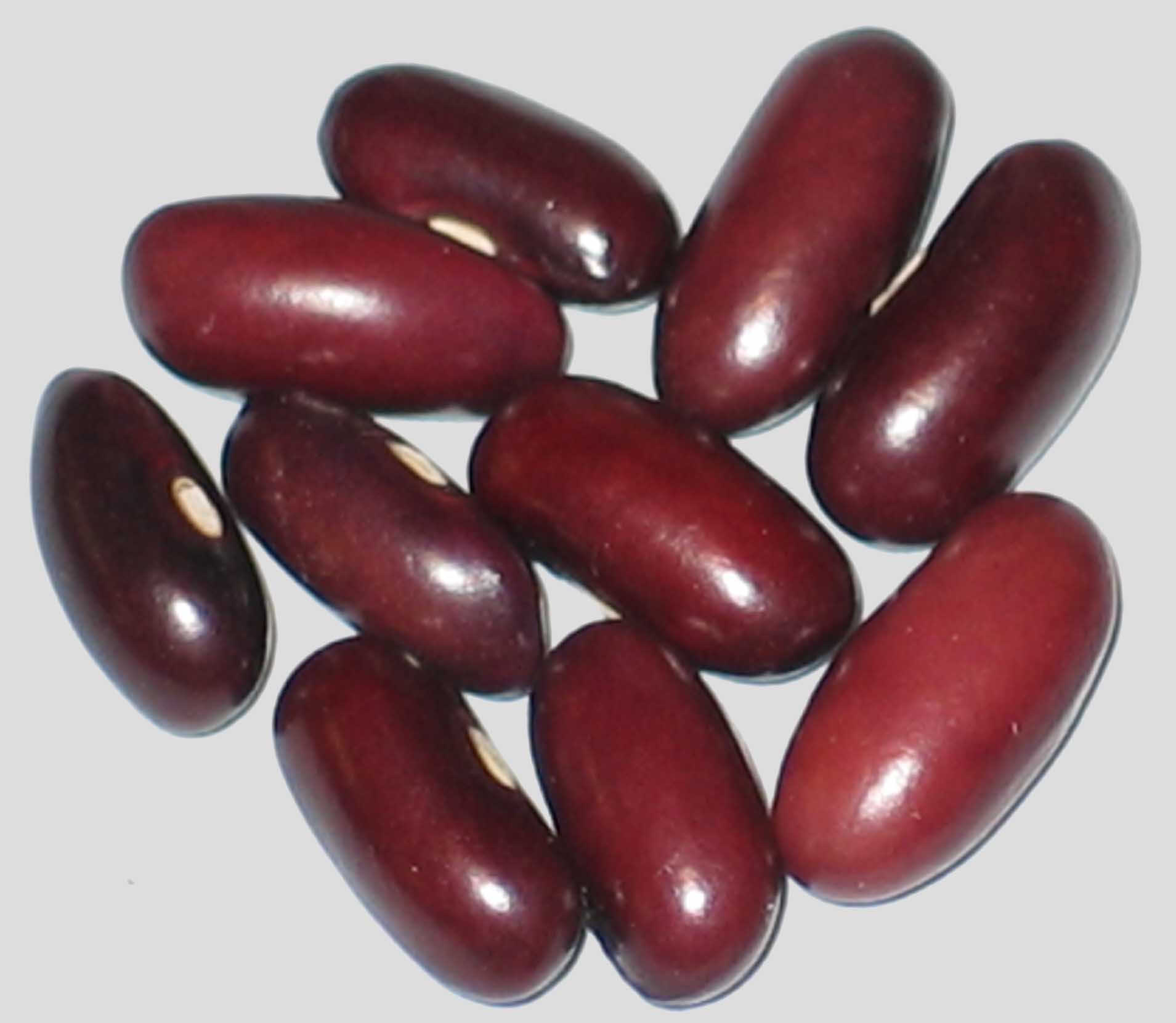 image of John's Best beans