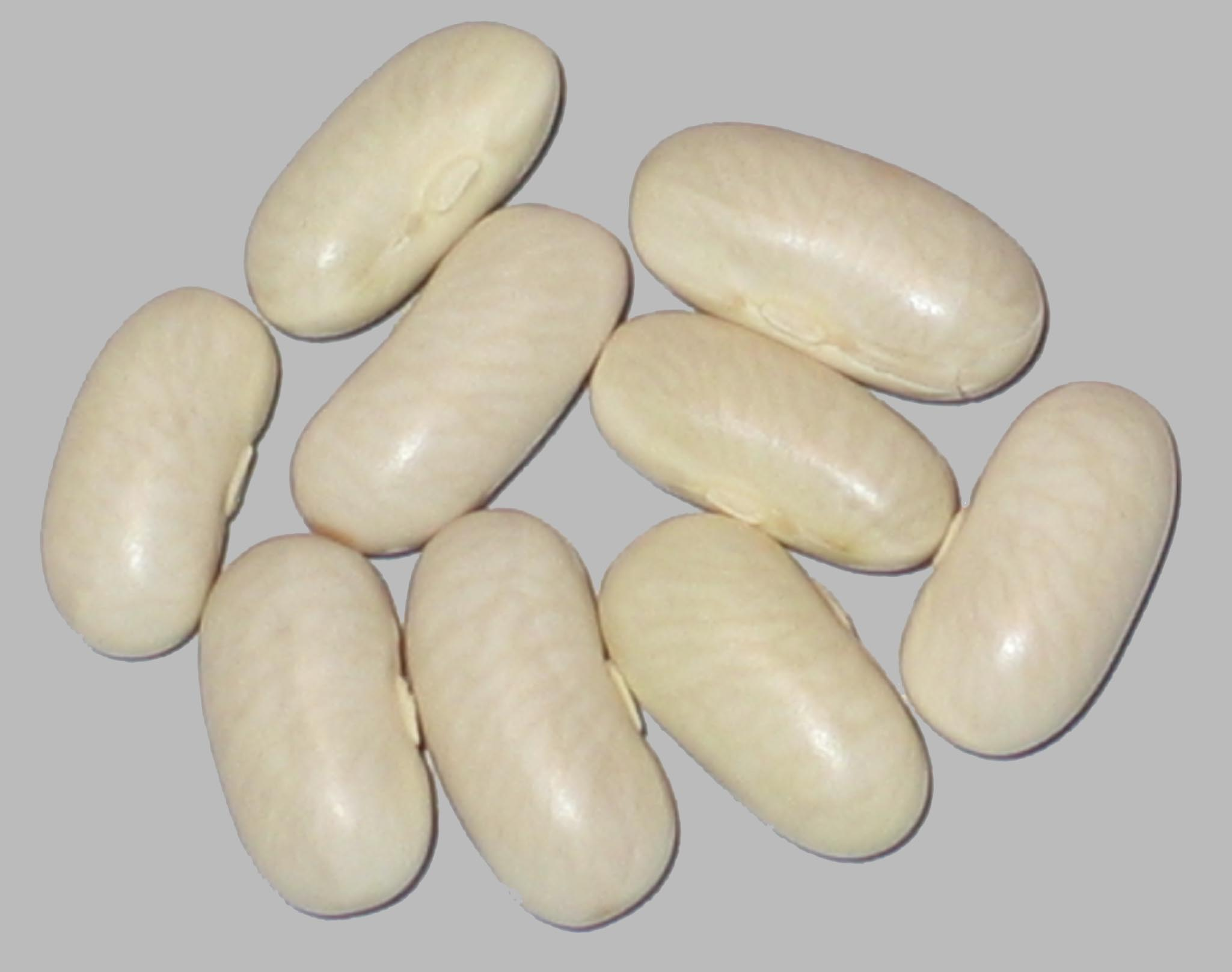 image of Label beans