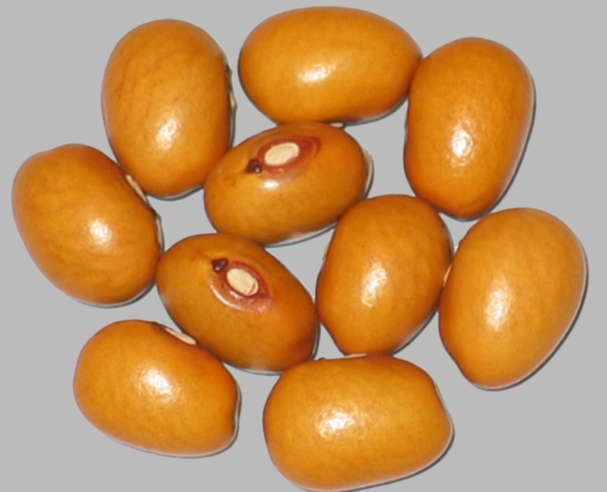 image of Marfax beans