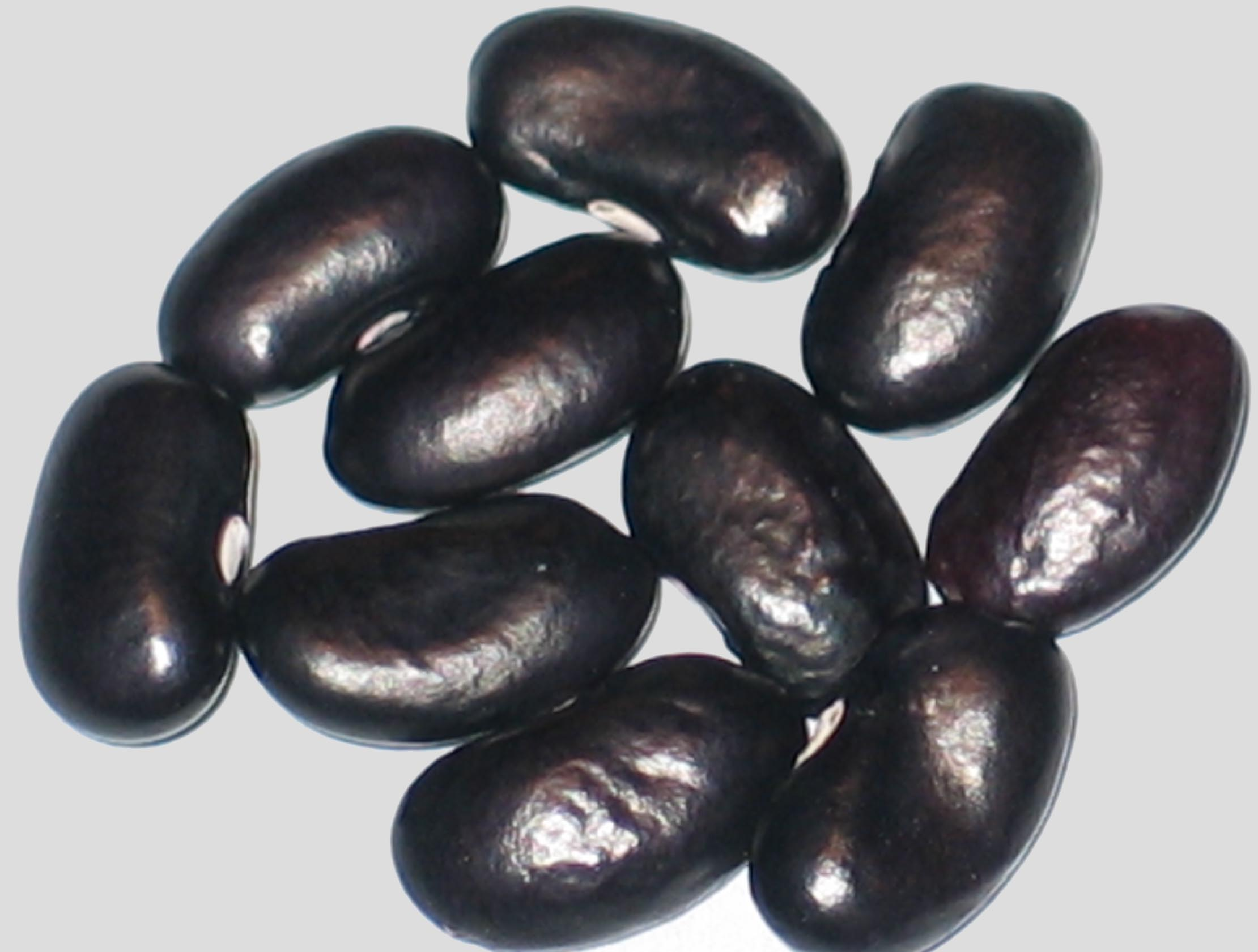 image of No Name WB-PKT #45 beans