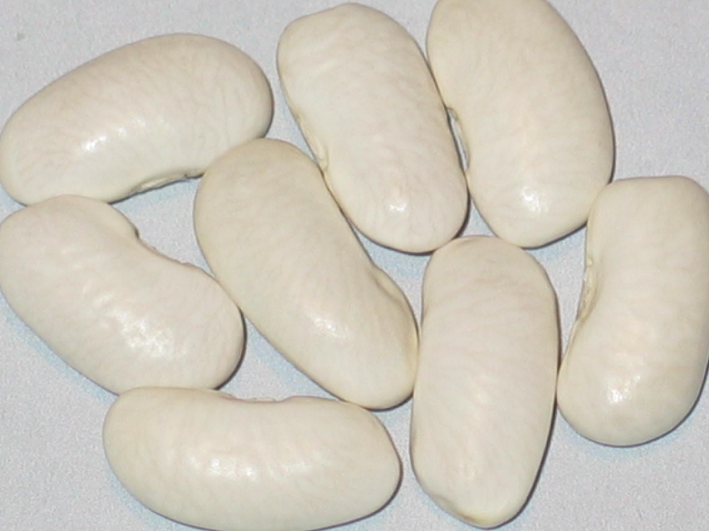 image of Piatella beans
