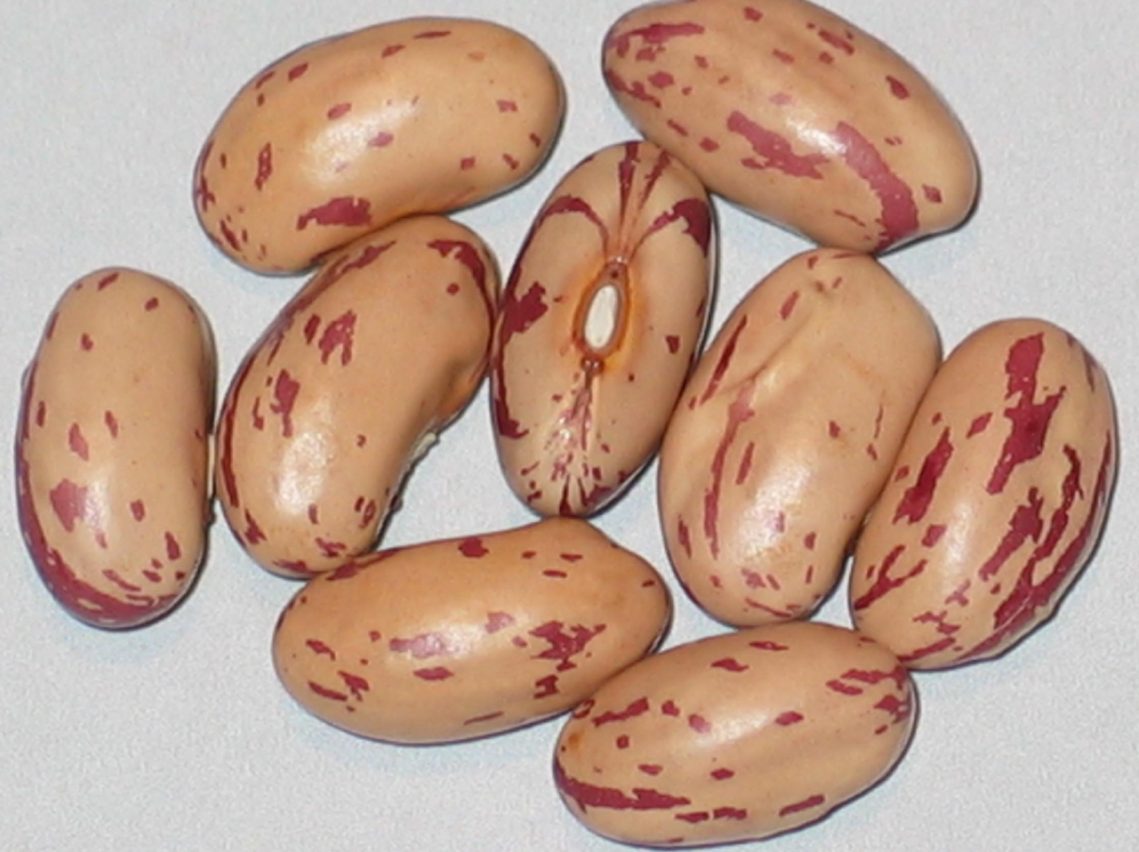image of Valley View beans